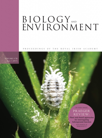 literature review environmental