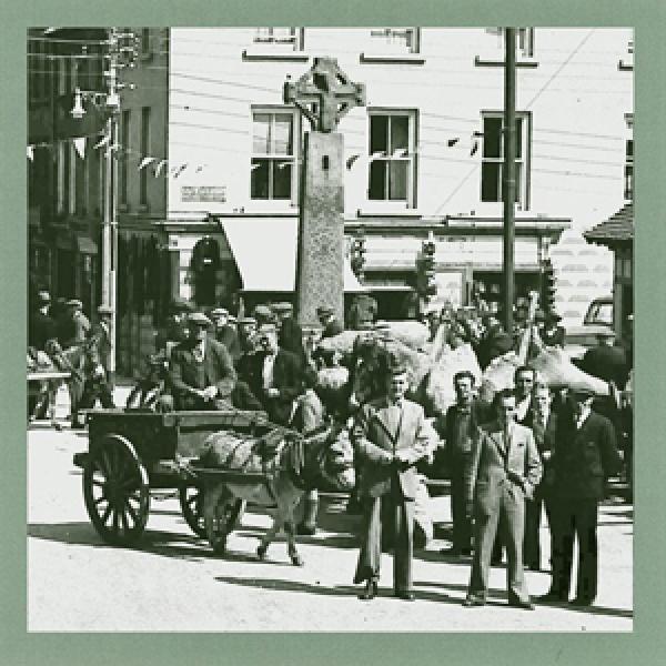 Irish Historic Towns Atlas Online   Royal Irish Academy